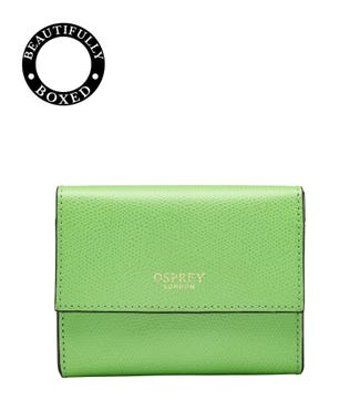 The Rainbow Leather Matinee Purse in green
