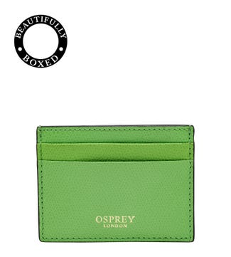 The Rainbow Leather Card Slip in apple green
