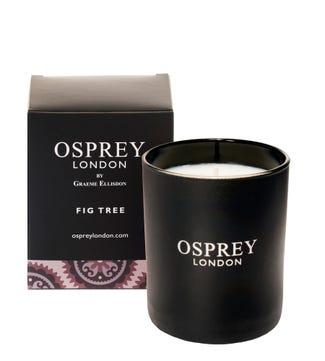 Fig Tree Fragranced Candle   OSPREY LONDON
