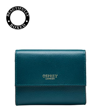 The Rainbow Leather Matinee Purse in teal  | OSPREY LONDON