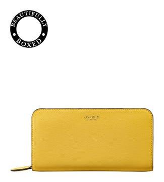 The Rainbow Leather Zip-Round Purse in lemon yellow | OSPREY LONDON
