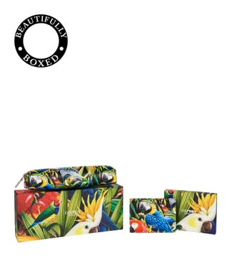 The Ciara Printed Leather Tidy Set in parrot | OSPREY LONDON