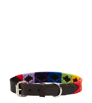 The Embroidered Leather Dog Collar in rainbow | OSPREY LONDON