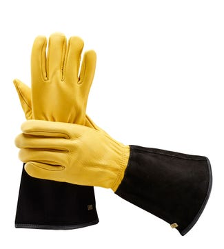 Tough Touch Men's Gardening Gloves | OSPREY LONDON