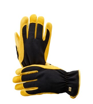 Winter Touch Women's Gardening Gloves in yellow & black | OSPREY LONDON