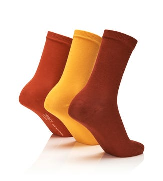 Women's Rainbow Luxury Cotton Rich Socks Set of 3 Spice in burnt orange & yellow & orange | OSPREY LONDON