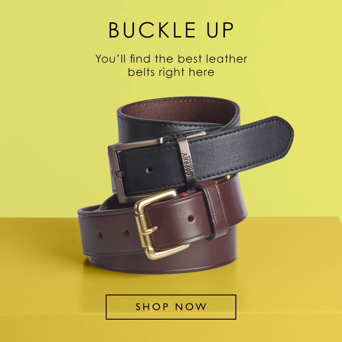 You'll find the best leather belts right here